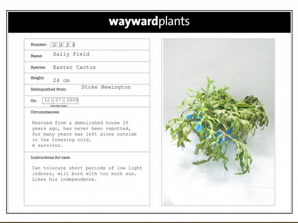 plant adoption card