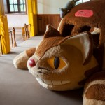 Catbus, Now In A Convenient Adult Size